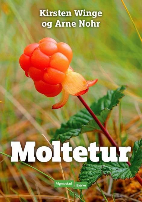 Bilde av Bok Moltetur
