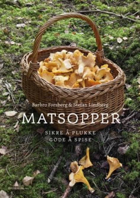 Bilde av Bok Matsopper